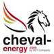 webanalyste-formation-analytics-logo-cheval-energy