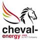 webanalyste-formation-analytics-logo-cheval-energy